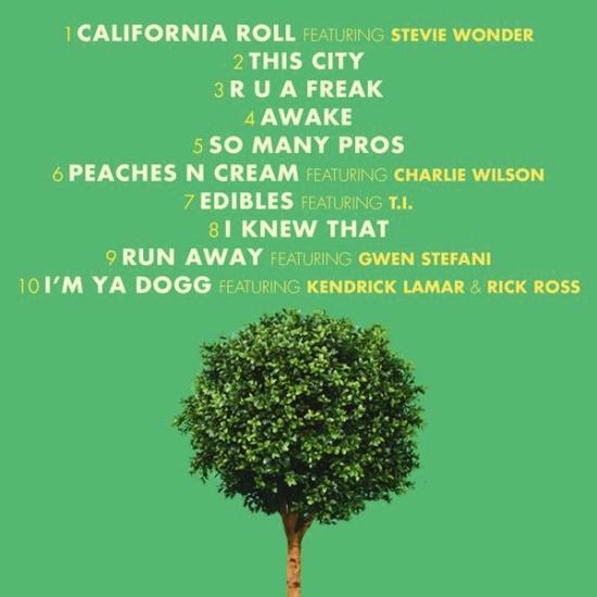 snoop-bush-tracklist-1